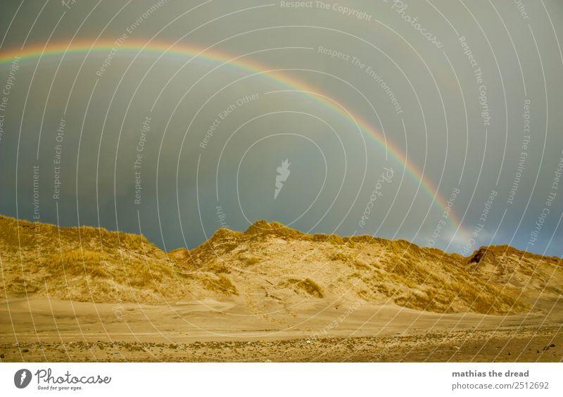 SPEKTRUM Natur Landschaft Sand Wolken Horizont Regen Strand ästhetisch schön Wärme Farbe Regenbogen Prisma rund Stranddüne Gold Topf Farbfoto Außenaufnahme