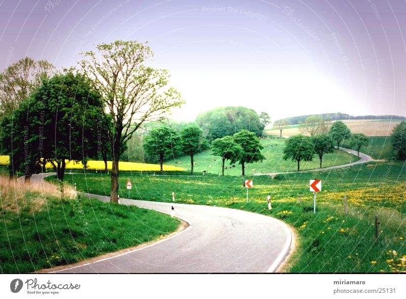 Erzgebirgslandschaft Erzgebirge Hügel grün Berge u. Gebirge Landschaft Straße Kurve