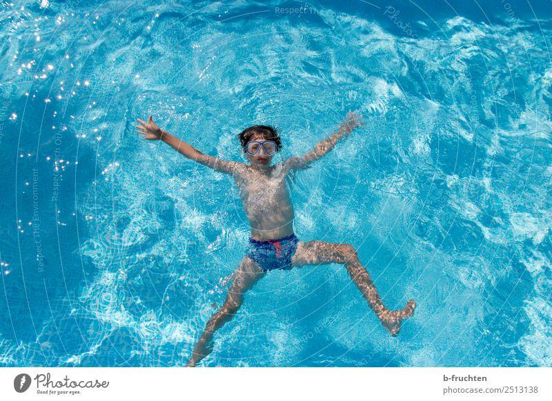 Kind im Schwimmbecken, Vogelperspektive Freude Leben Schwimmbad Ferien & Urlaub & Reisen Schwimmen & Baden tauchen Junge Körper 8-13 Jahre Kindheit Wasser