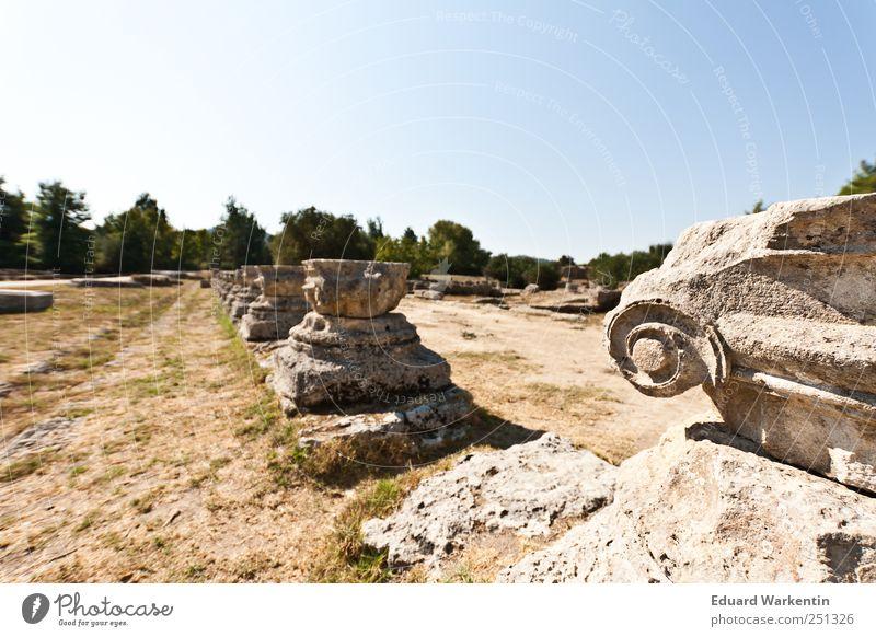 Olympia Ruine Vergangenheit Griechenland Peloponnes Olympiade Säule Architektur Antike Bauwerk Gebäude Tempel ionische säulen Farbfoto Außenaufnahme Nahaufnahme