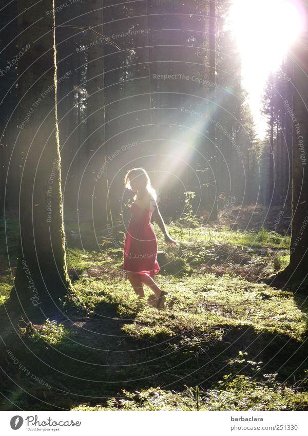 Lichtfänger feminin Junge Frau Jugendliche Erwachsene Leben 1 Mensch 18-30 Jahre Sonne Sonnenlicht Sommer Baum Moos Wald Märchenwald Kleid blond Bewegung