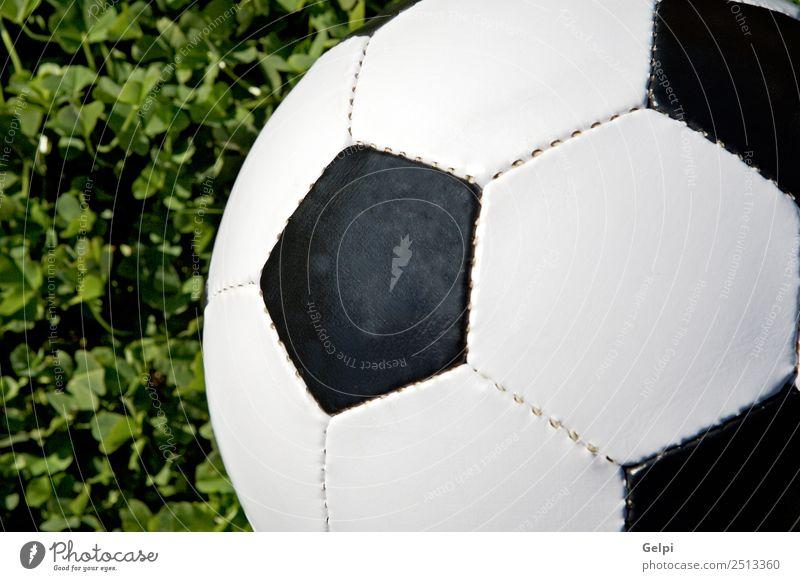 Fußball Freude Glück Leben Freizeit & Hobby Spielen Sport Erfolg Stadion Erde Gras Wege & Pfade Leder Kugel grün schwarz weiß Konkurrenz vereinzelt Team