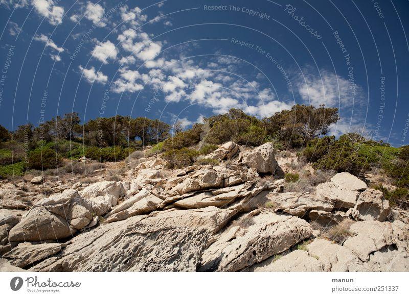 Urlaubsfoto Himmel Baum Ferien & Urlaub & Reisen Wolken Landschaft Berge u. Gebirge Stein Felsen natürlich authentisch Perspektive Gipfel Schönes Wetter Sardinien Pinie