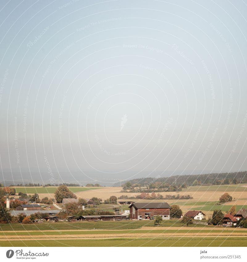 CHAMANSÜLZ | blick ins ländle Himmel Natur blau Pflanze Haus Umwelt Landschaft Feld natürlich Dorf