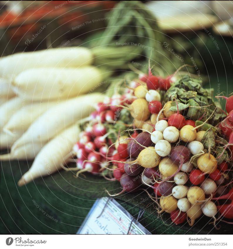München. Lebensmittel Gemüse Radieschen Rettich Ernährung Marktplatz Marktstand Decke Duft exotisch lecker rund saftig mehrfarbig Farbfoto Außenaufnahme