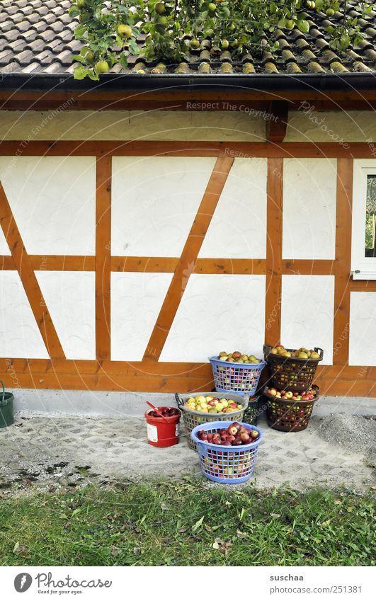 erntezeit in chamansülz Dorf Einfamilienhaus Bauwerk Gebäude Architektur Mauer Wand Fassade Dach Beton Holz Linie Häusliches Leben Fachwerkhaus Äpfel Körbe