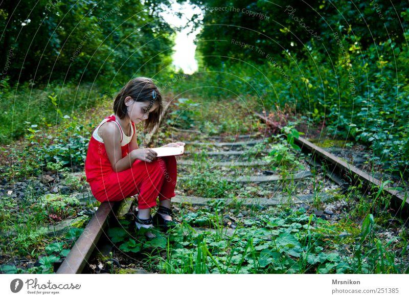 der Weg Mensch Kind Natur Baum Mädchen Sommer Wald Landschaft Gras Park Kindheit Erde warten Buch Eisenbahn Bekleidung