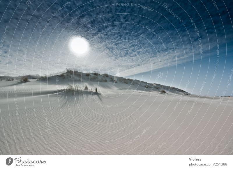 Spiekeroog | ...one more time Natur Landschaft Himmel Wolken Sonne Sonnenlicht Schönes Wetter Strand Nordsee Erholung genießen Nordseeinsel Düne Gegenlicht