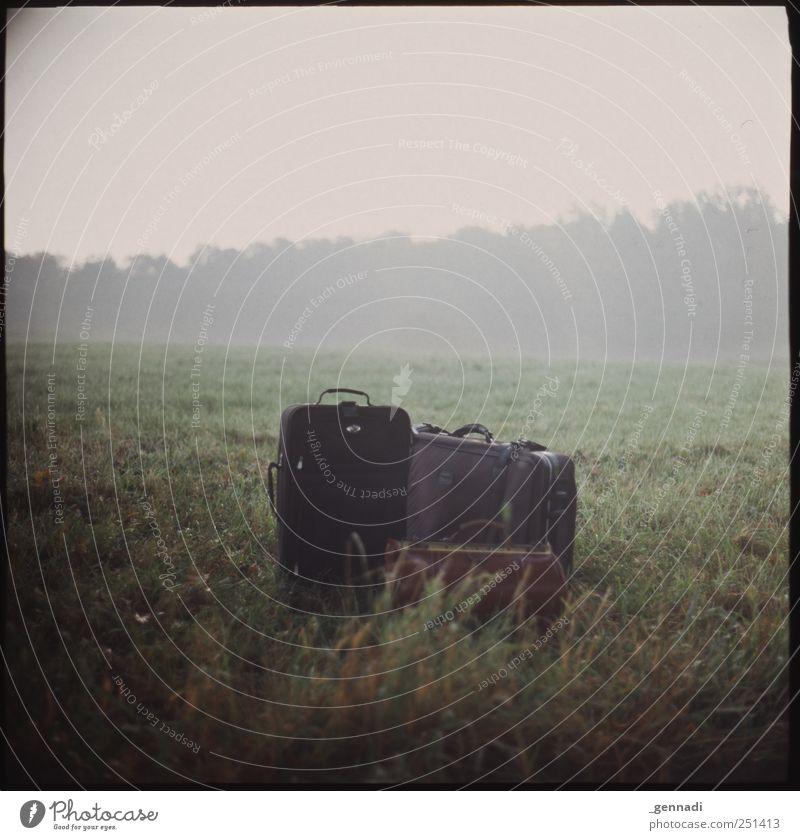 Stehen gelassen Umwelt Natur Landschaft Nebel Gras Wiese Gepäck Tasche Gefühle ruhig Ferien & Urlaub & Reisen Rahmen analog Dinge gestellt Farbfoto