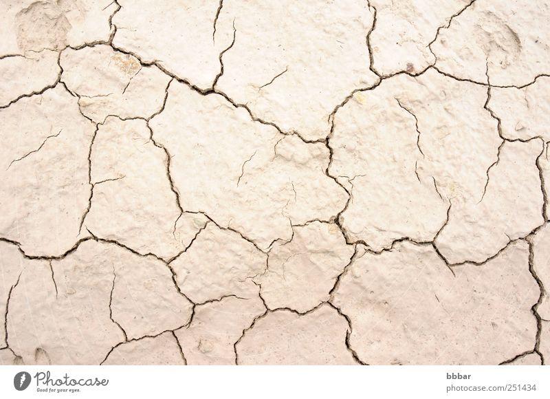 Getrocknete und gerissene Erde Sommer Umwelt Natur Landschaft Sand Klima Klimawandel Wetter Dürre Wüste dreckig heiß natürlich braun grau Tod Desaster Boden