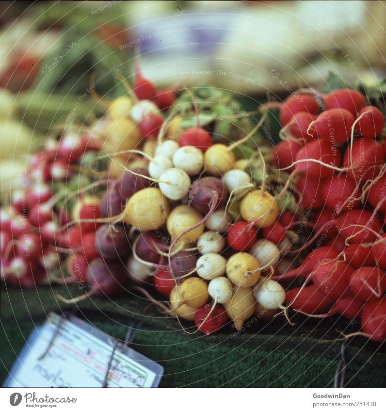 München. Lebensmittel Ernährung Radieschen Natur Marktplatz frisch lecker schön viele mehrfarbig Farbfoto Außenaufnahme Menschenleer Tag Licht