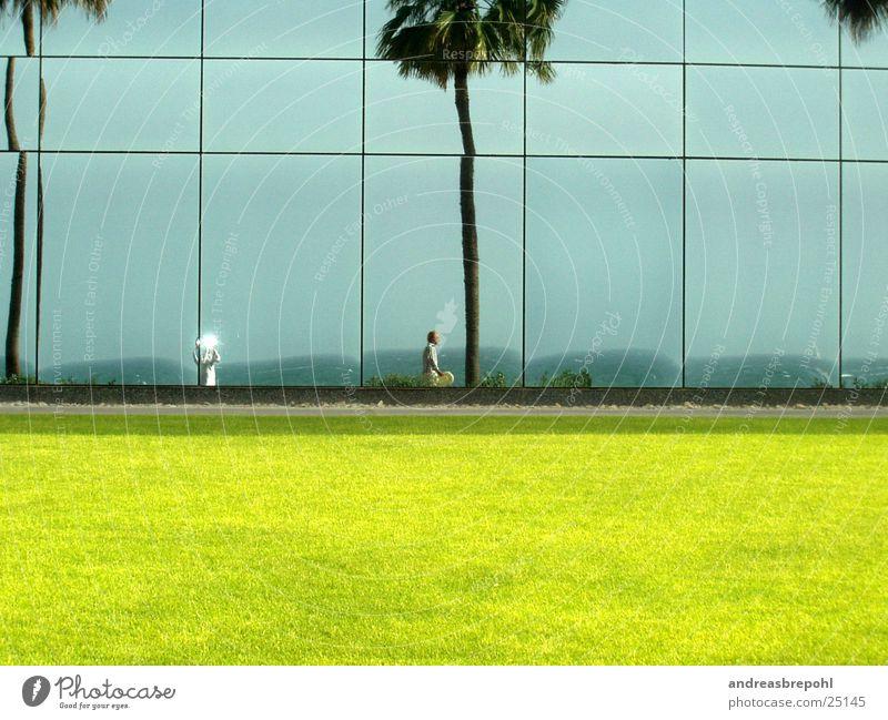 me, myself and sista Sonne Wand Fenster Rasen Spiegel Palme Spiegelbild