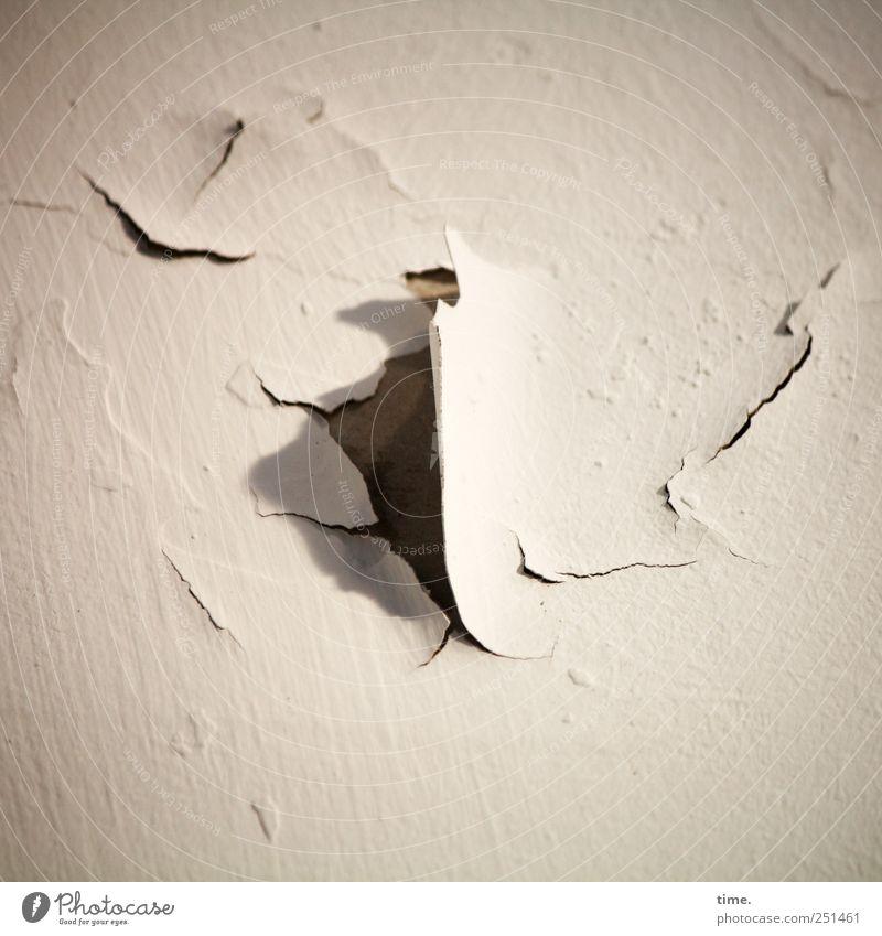 Lebenslinien #32 alt Farbe Wand Mauer kaputt Wandel & Veränderung Vergänglichkeit trocken Putz Riss Renovieren abblättern wellig Wasserschaden herausragen verzogen