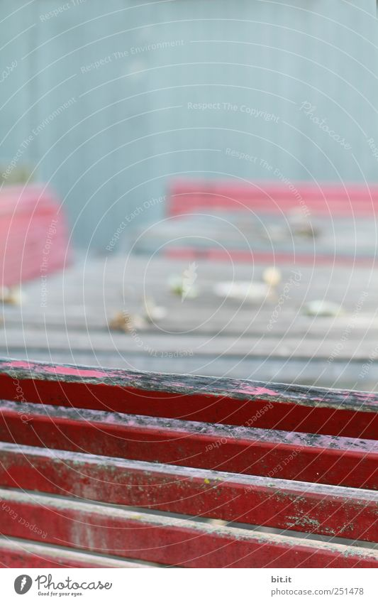 [CHAMANSÜLZ 2011] alt blau rot Holz Garten Linie Tisch kaputt Stuhl Bank einfach trocken verfallen Möbel Holzbrett Geometrie