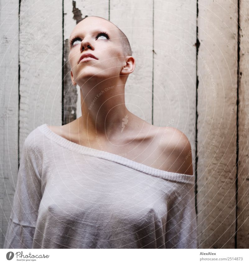 Portrait einer jungen, sehr kurzhaarigen Frau Jugendliche Junge Frau Stadt schön Erotik ruhig 18-30 Jahre Erwachsene feminin Holz Stil außergewöhnlich Stimmung