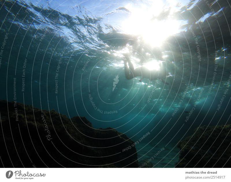 UNTER DEM MEER Freude Ferien & Urlaub & Reisen Abenteuer Sommerurlaub Schwimmen & Baden tauchen feminin Junge Frau Jugendliche Wasser Schönes Wetter Felsen Meer