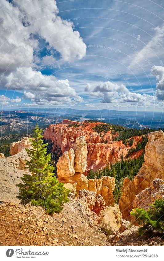 Bryce Canyon Nationalpark, Utah, USA Ferien & Urlaub & Reisen Tourismus Abenteuer Freiheit Sommer Berge u. Gebirge wandern Natur Landschaft Himmel Baum Hügel