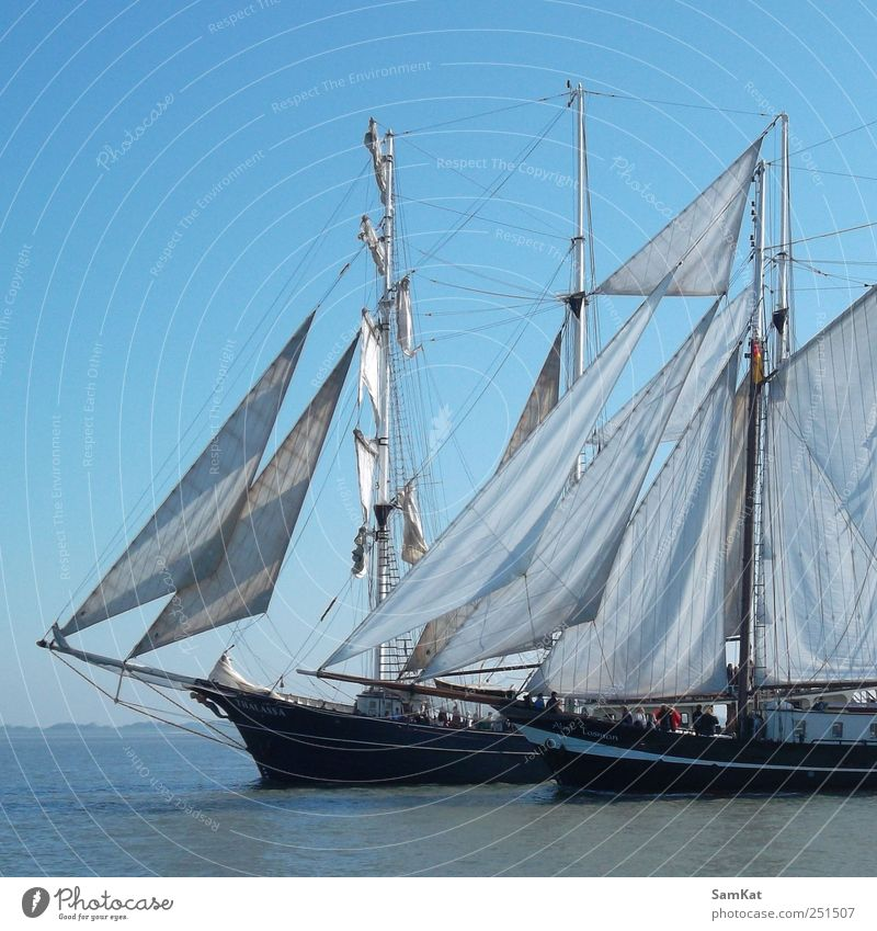 Himmel Wasser blau Gelassenheit Schönes Wetter Segel Konkurrenz Bootsfahrt