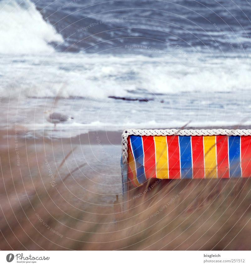 Strandkorb Meer Wellen Wasser Wind Sturm Schilfrohr Küste Ostsee blau braun mehrfarbig gelb rot weiß Einsamkeit Vergänglichkeit Farbfoto Außenaufnahme