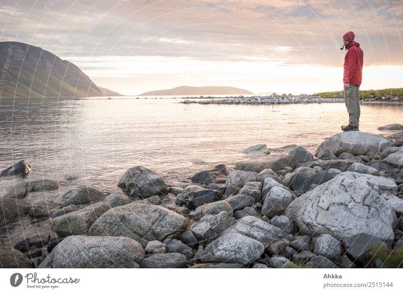 Junger Mann in Mitternachtssonne am Polarmeer Ferien & Urlaub & Reisen Jugendliche Meer Erholung ruhig Ferne Küste Freiheit Stimmung Zufriedenheit Horizont