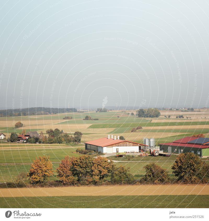CHAMANSÜLZ   landwirtschaftsbetrieb Landwirtschaft Forstwirtschaft Umwelt Natur Landschaft Himmel Herbst Pflanze Baum Feld Dorf Haus natürlich Farbfoto