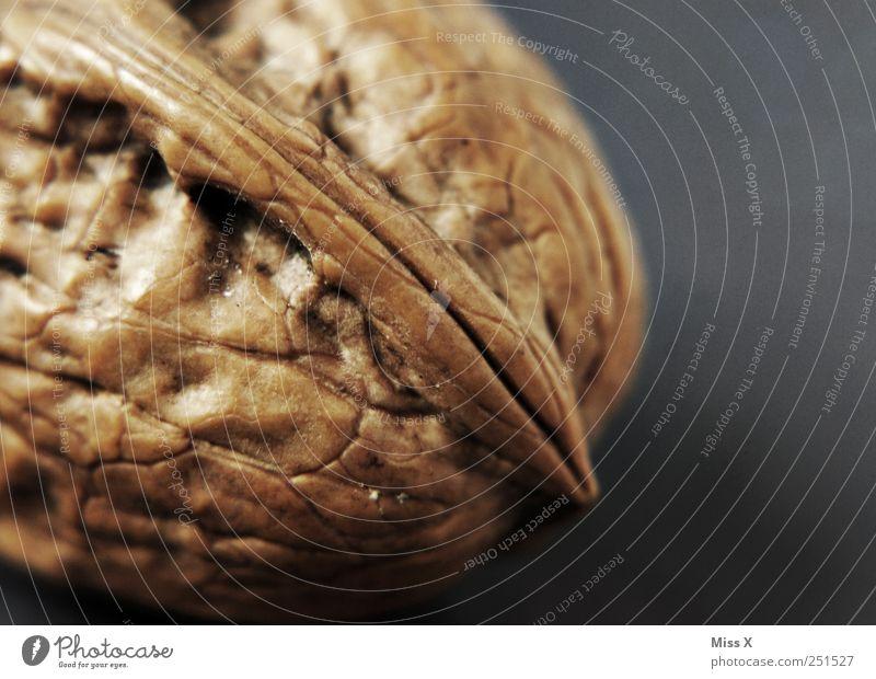 harte Nuss Lebensmittel Ernährung braun Walnuss Hülle Kerne Farbfoto Makroaufnahme Menschenleer Textfreiraum rechts Schwache Tiefenschärfe