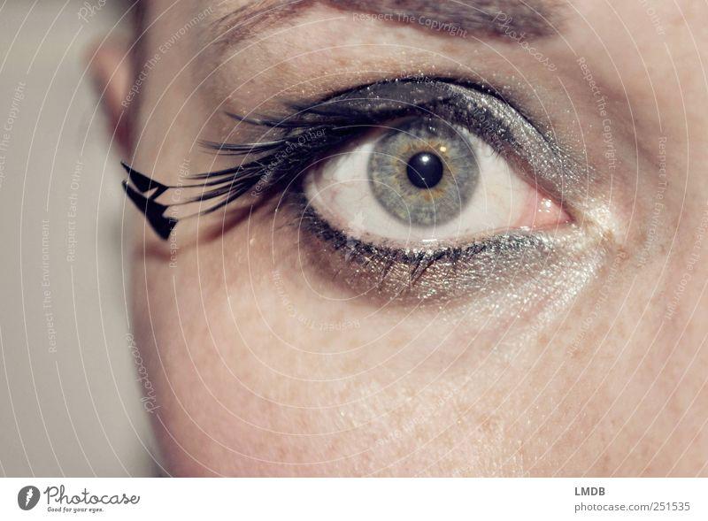 Pfauen-Auge Stil schön Gesicht Schminke Wimperntusche Mensch feminin 1 ästhetisch glänzend schwarz silber Coolness Begierde Neugier Überraschung eitel kalt