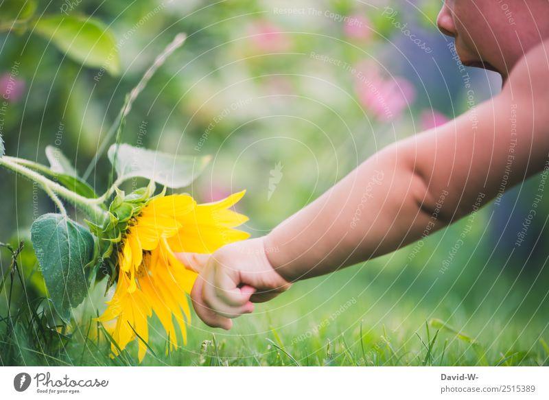 Unterwegs im Garten VIII Mensch Kind Baby Kleinkind Mädchen Junge Kindheit Leben Mund Finger 1 0-12 Monate Umwelt Natur Sommer Schönes Wetter Pflanze Blume