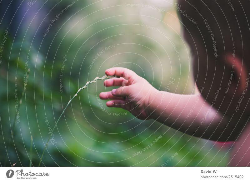 Unterwegs im Garten VI elegant Kindererziehung Mensch Baby Kleinkind Kindheit Leben Hand Finger 1 0-12 Monate Umwelt Natur Landschaft Frühling Sommer Klima