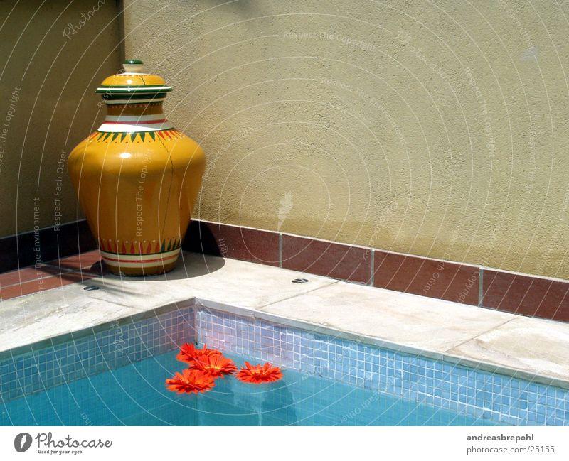 Sonnenkomposition mit Pool und Blumen Vase Physik Licht nass Schweben Wasser Wärme Schatten Fliesen u. Kacheln Im Wasser treiben