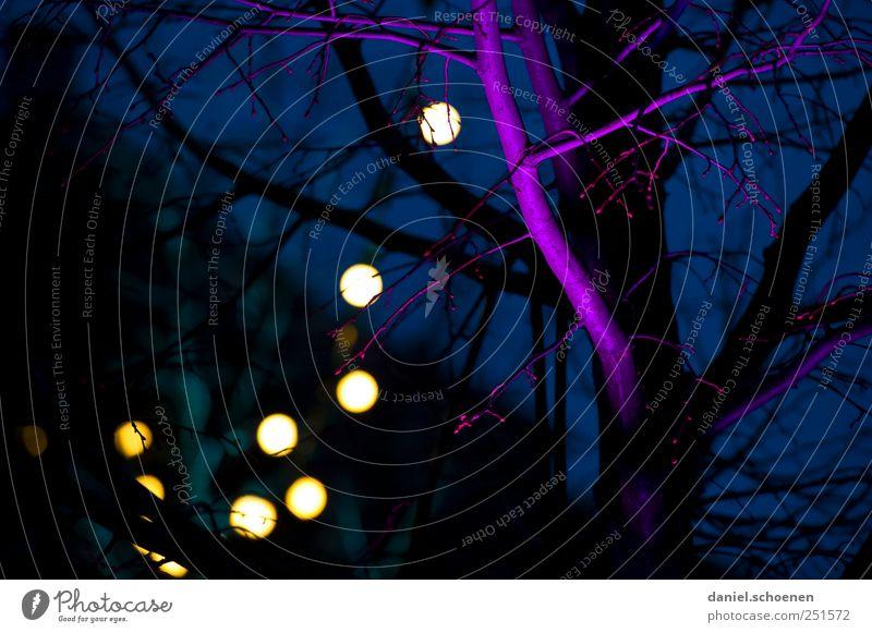 Weihnachtsmarkt, französisch blau Weihnachten & Advent Baum violett Lichterkette