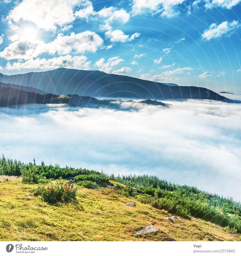 Grüne Berge in den Wolken schön Ferien & Urlaub & Reisen Tourismus Freiheit Sommer Sommerurlaub Sonne Berge u. Gebirge wandern Umwelt Natur Landschaft Himmel