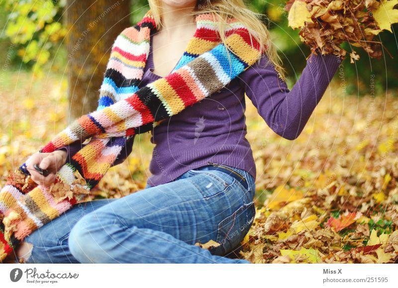 mit Schwung Mensch Natur Jugendliche Freude Blatt gelb feminin Herbst Gefühle Garten Erwachsene blond Fröhlichkeit Lebensfreude Schönes Wetter 18-30 Jahre