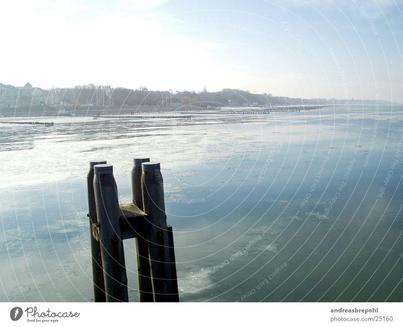 Kühlungsborn im Winter Eisscholle Vogel Buhne kalt gefroren Brandung Wasser Ostsee Küste Flachwasser Grundbesitz Frost Brücke Himmel