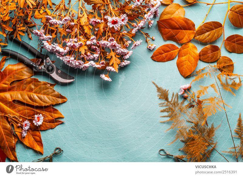Herbst Blumen und Blättern auf blau Stil Design Freizeit & Hobby Tisch Natur Pflanze Blatt Blüte Dekoration & Verzierung Blumenstrauß gelb rosa arrangiert