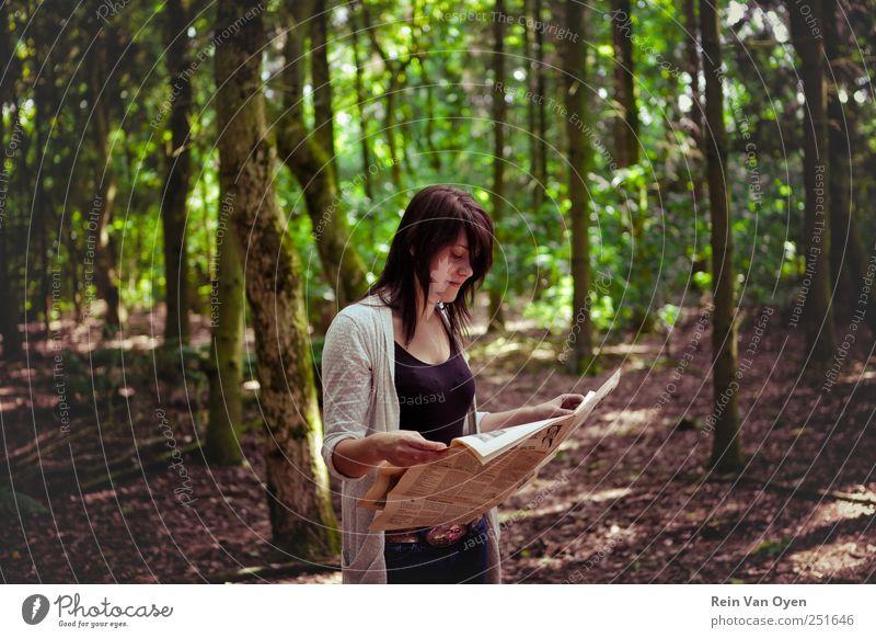 Zeitungswald Baum Wald lesen Frau dunkles Haar dunkelhaarig Farbfoto Außenaufnahme Textfreiraum Mitte Blick nach unten