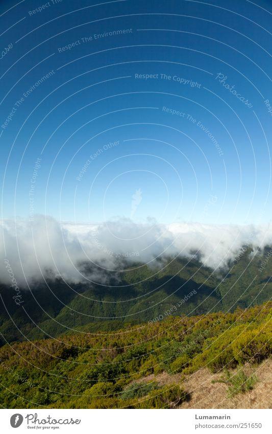 Wolkenband Landschaft Urelemente Erde Luft Himmel Wolkenloser Himmel Horizont Wetter Schönes Wetter Berge u. Gebirge Insel Madeira Ferne gigantisch groß