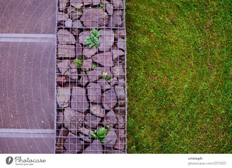 Ordnung Gras Park Wiese Mauer Wand Wege & Pfade Trennung Strukturen & Formen Kontrast grün mehrfarbig Vogelperspektive