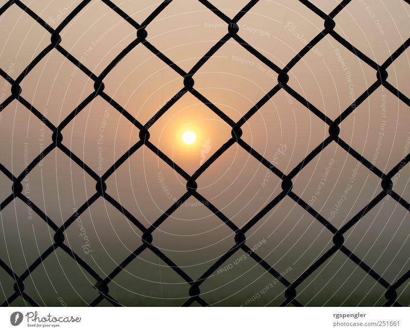 Sonne im Netz Sonne ruhig Wiese Luft Metall Wetter Feld Nebel Klima außergewöhnlich entdecken Symmetrie