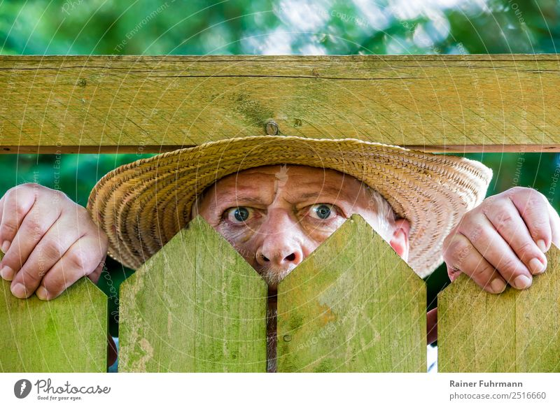ein neugieriger Nachbar blickt über einen Gartenzaun Mensch maskulin Mann Erwachsene Männlicher Senior Gesicht 1 60 und älter beobachten Neugier Misstrauen Neid