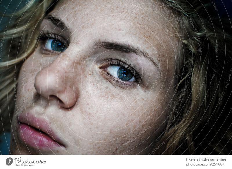 sommersprossig Frau Mensch Jugendliche blau schön Gesicht Auge feminin Kopf Haare & Frisuren Erwachsene Mund blond Haut glänzend