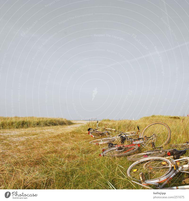 pack die badehose ein Leben Freizeit & Hobby Ferien & Urlaub & Reisen Tourismus Ausflug Abenteuer Ferne Freiheit Fahrradtour Sommer Sommerurlaub Strand Meer
