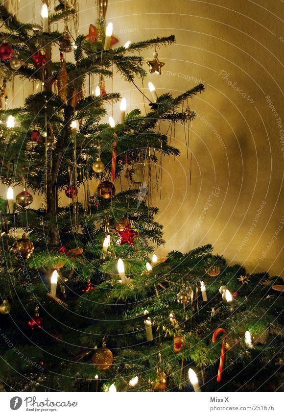 Es Weihnachtet sehr Weihnachten & Advent Baum Winter Stimmung Feste & Feiern glänzend Kerze Dekoration & Verzierung leuchten Weihnachtsbaum Schmuck Tanne