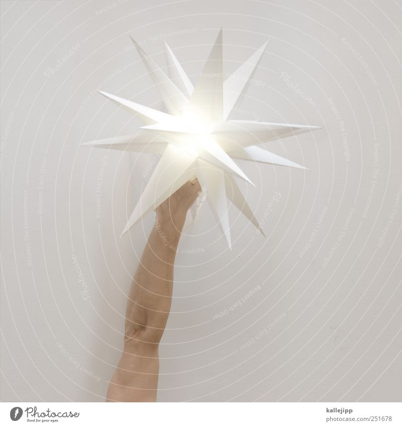 lauras stern Mensch Mann Weihnachten & Advent Hand Erwachsene Religion & Glaube Beleuchtung Arme glänzend maskulin Erfolg Zukunft Stern Stern (Symbol) Papier