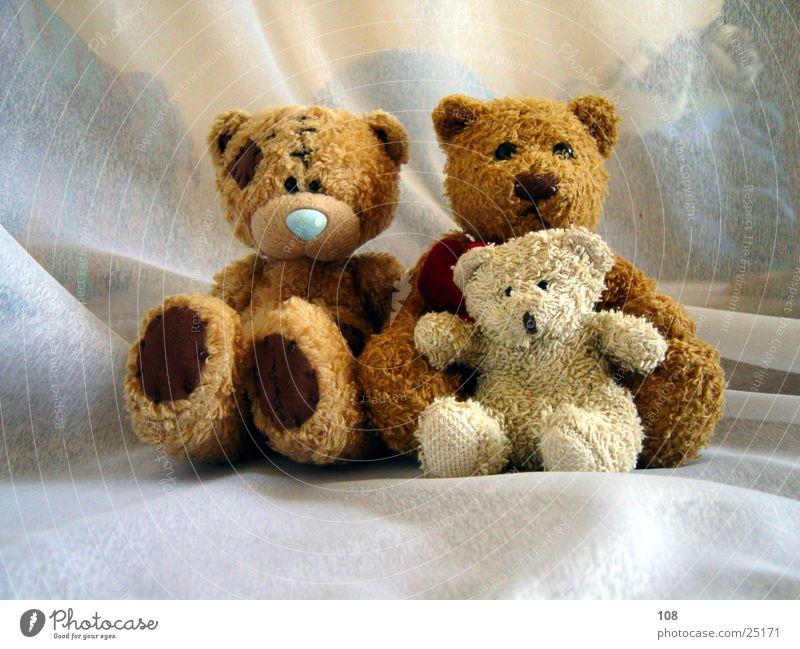 Auch nur Menschen Teddybär Familie & Verwandtschaft Frieden harmonisch Freude Fototermin mehrere sitzen Zusammensein Blick in die Kamera 3