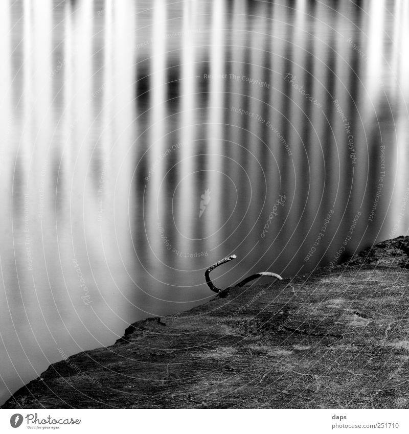 reflections Kunst Umwelt Natur Wasser Küste Flussufer Main Gefühle Fröhlichkeit Zufriedenheit Cologne Fine Art Schwarzweißfoto black white Quadrat 6x6