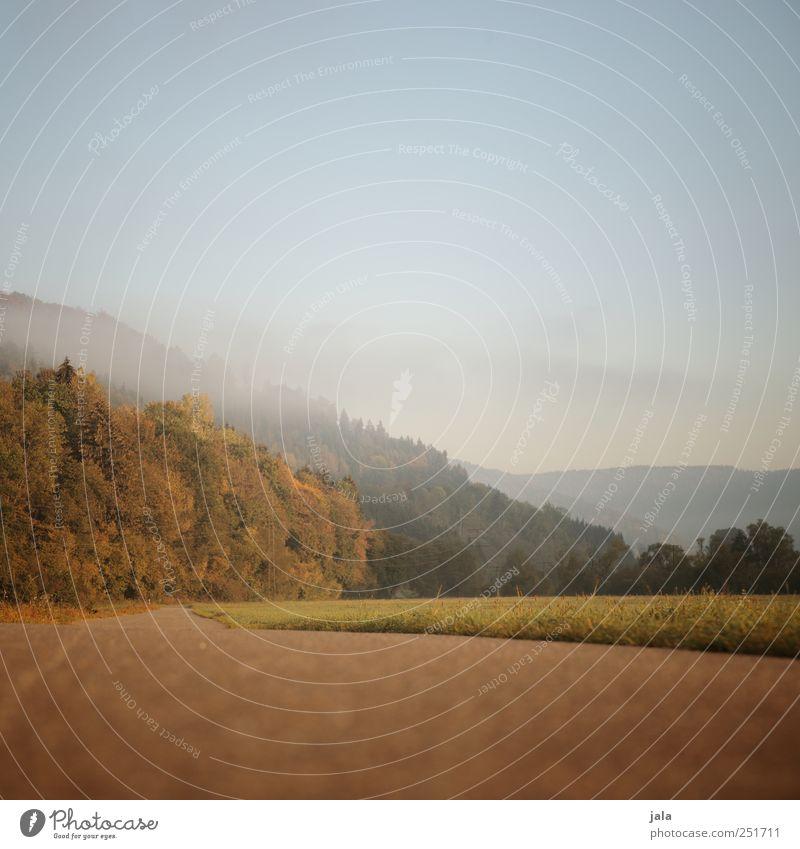 CHAMANSÜLZ | feldweg Himmel Natur Baum Pflanze Wald Wiese Herbst Umwelt Landschaft Gras Wege & Pfade natürlich Hügel Grünpflanze Wildpflanze