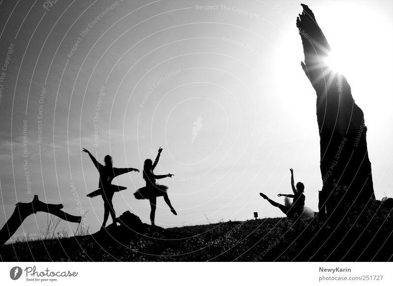 Ballet Dancing Girls Black and White Mensch Baum Sonne feminin Freiheit Bewegung Freundschaft Tanzen elegant ästhetisch Show Theaterschauspiel Bühne Publikum