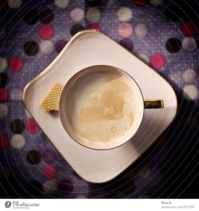 Crema de la Crema rosa ästhetisch Getränk Kaffee violett Punkt Geschirr lecker Tasse Teller genießen Keks gepunktet Kaffeetasse bitter