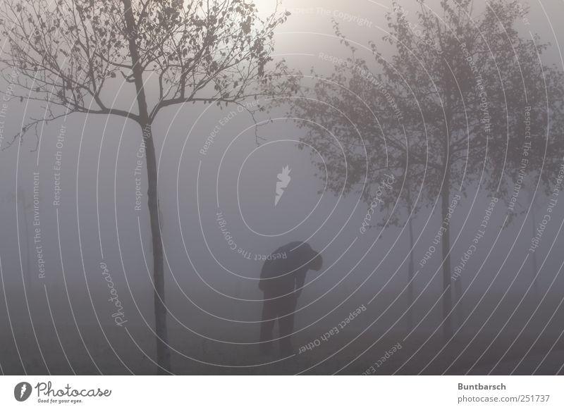 Alpha-Mann Erwachsene Nebel Baum stehen Traurigkeit bedrohlich dunkel gruselig hässlich trist grau Trauer Schmerz Sehnsucht Enttäuschung Einsamkeit schuldig